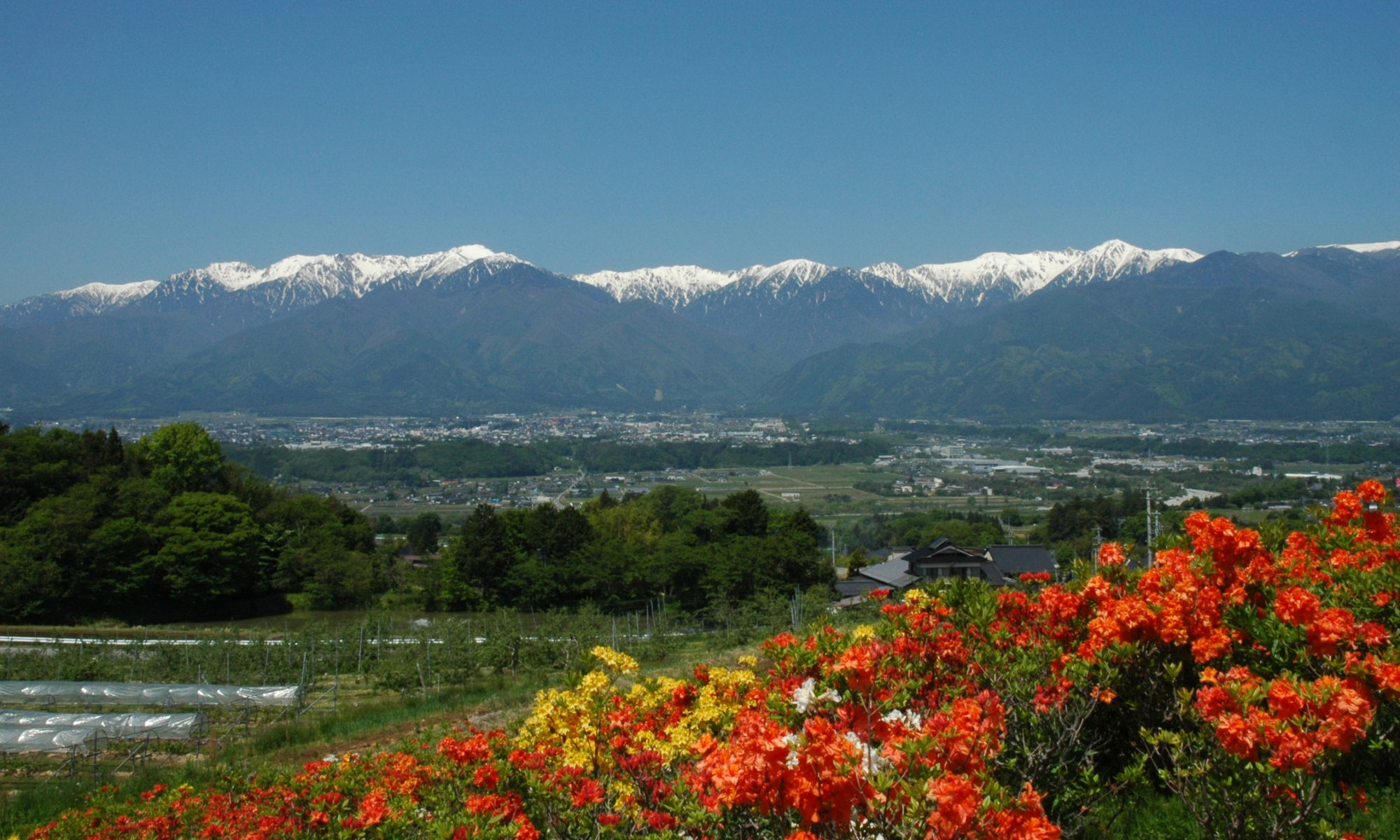 信州駒ヶ根での田舎暮らしを応援する【あるぷす不動産】のブログ